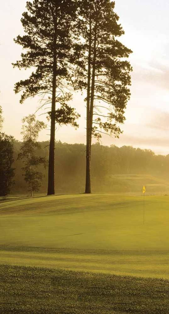 Brainerd Mn Golf Minnesota Golf Courses Brainerd Golf